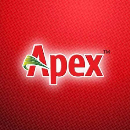 APEX-FOOTWEAR-LTD logo