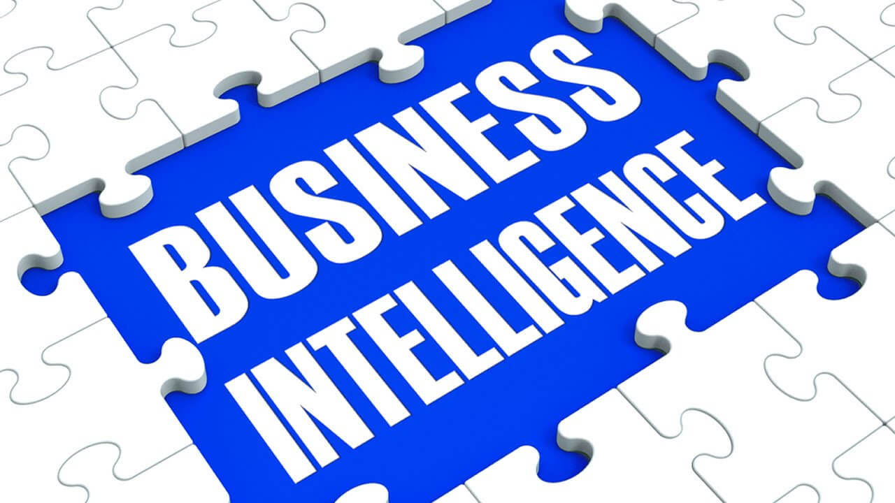 Business Intelligence puzzle